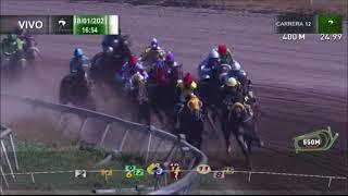 Vidéo de la course PMU PREMIO ZADAR HANDICAP