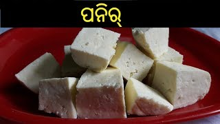 ପନିର୍   How to Make Paneer in Odia   Paneer in Odia   Homemade Paneer in Odia   ODIA FOOD