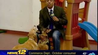 Paws And Play Thanksgiving Party W/ Channel 12 News
