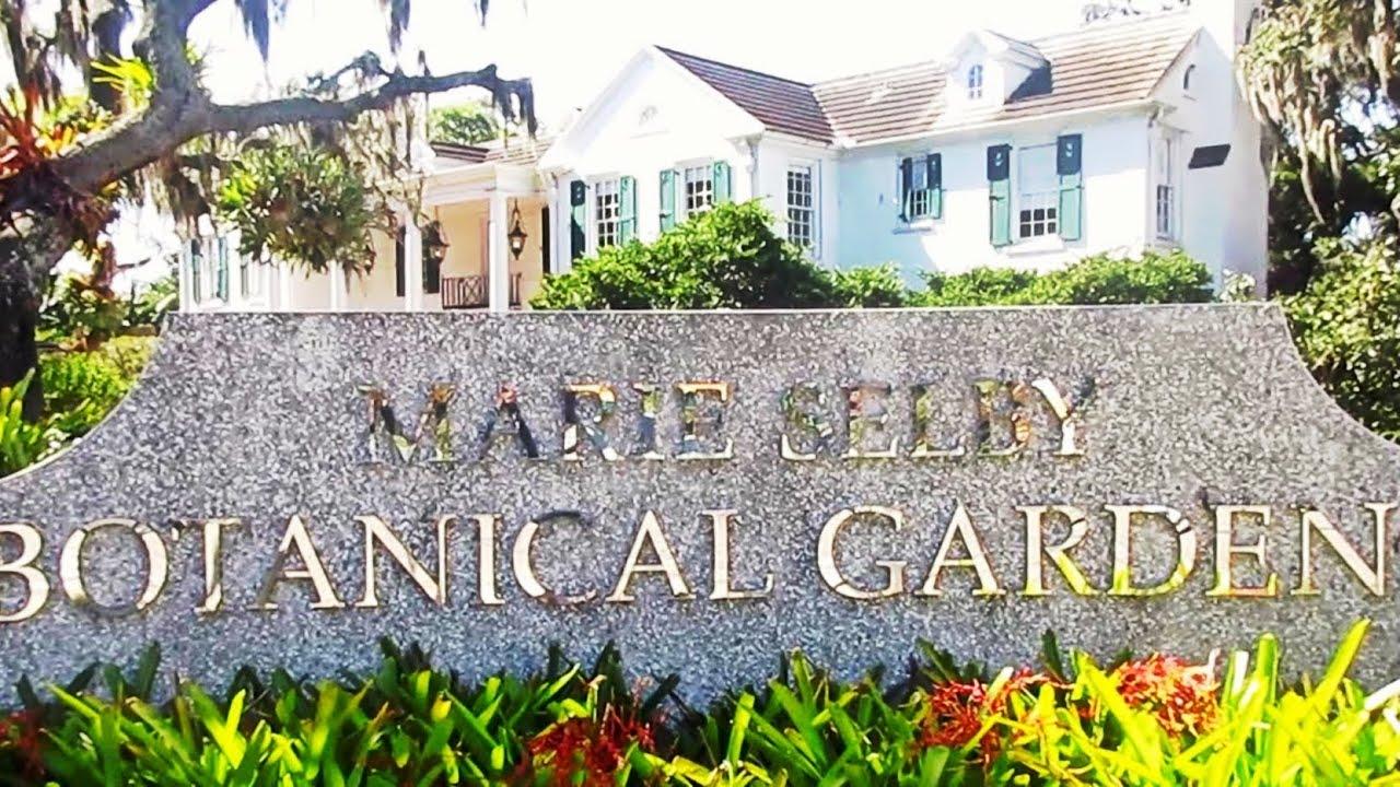 Marie Selby Botanical Gardens Sarasota Fl Review