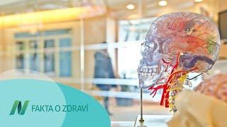 Způsobuje marihuana trvalé poškození mozku u dospělých?