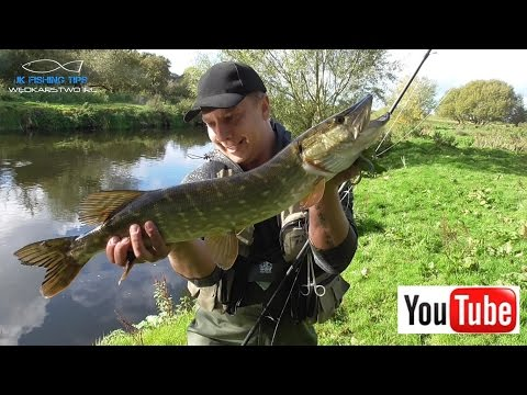 Szczupaki Atakują ! | Spinning , Martwa Rybka i Jesień nad rzeką Barrow