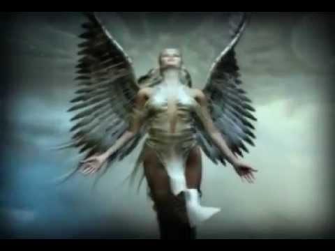 wings.wmv