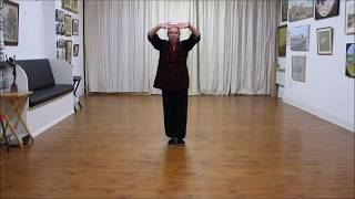 Tai Chi Dao Yin Exercise The Eagle Stretches