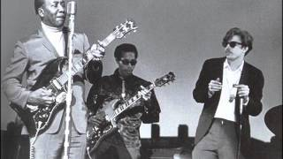 Muddy Waters- I'm Your Hoochie Coochie Man