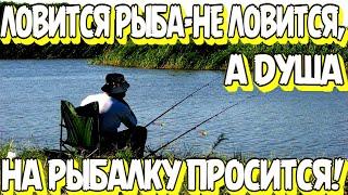 Кто не был на рыбалке тот много потерял Приколы на рыбалке Приколы на воде ВЕСЁЛАЯ РЫБАЛКА