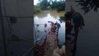 Download Video Mandi bugil MP3 3GP MP4