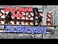 Trotol  Bulan Belajar Bunyi Ngeplong Pancingan Trotol Agar Ikut Gacor  Mp3 - Mp4 Download
