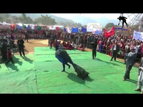 मयुर नाँच   MAYUR DANCE   Peacock Dance