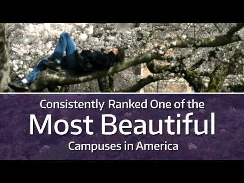 University of Washington School of Law: Leaders for the Global Common Good