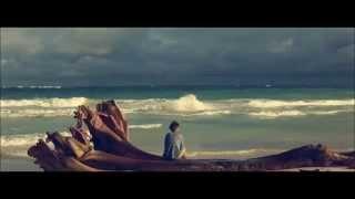 Mr Probz - waves (robin schulz remix) Lyrics Mp3
