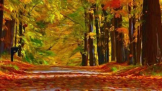 photoshop tutorial install an oil paint filter in cc 2014 2015 in windows