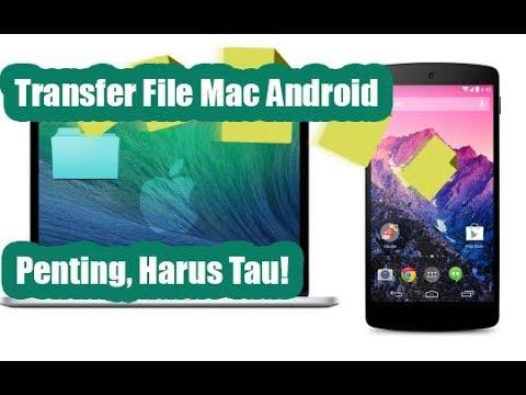 Harus Tau!! Cara Transfer File Android ke Macbook / iMac
