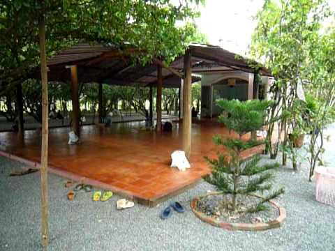 Khu vườn lạ ở Long An
