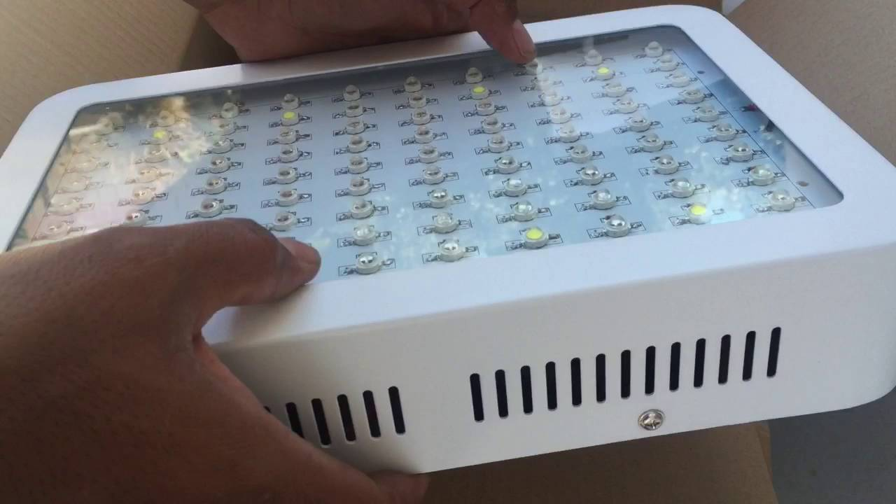 Morsen Led Grow Light 1000 Watt Review Youtube