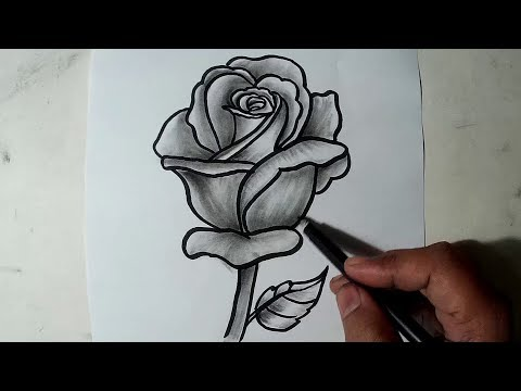 How to Draw A Rose || Pencil Drawing, Shading for Beginners