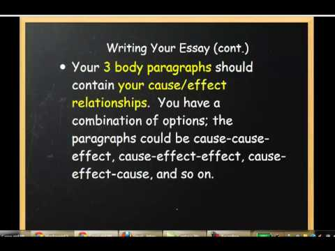 cause and effect writing examples