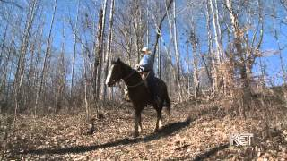 Hidden Cave Ranch B&B | Kentucky Life | KET