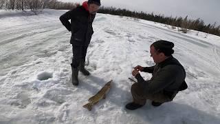 Трудовая Рыбалка Хариус 18.04.2020