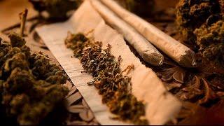 En la mira: Marihuana la hierba de la discordia (Reportaje completo) - Chilevisión - 10/07/2013