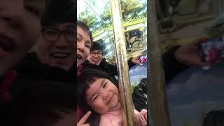 롯데월드 회전목마