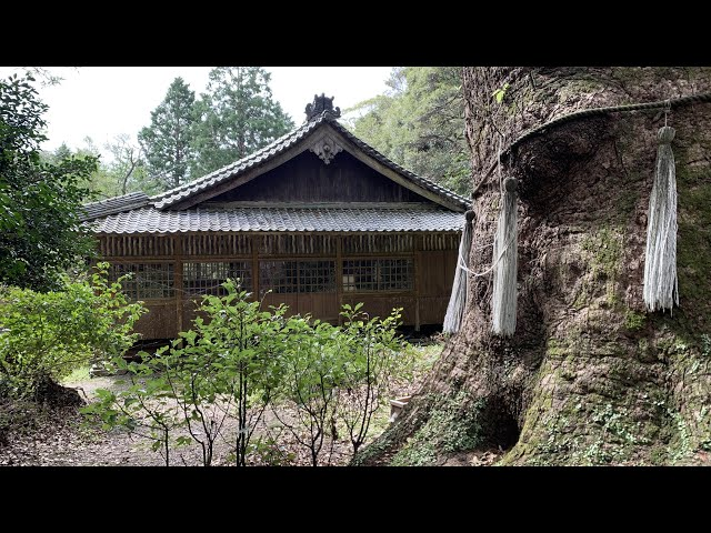 Tsushima Island Getaway Day 6 - Historical Sites