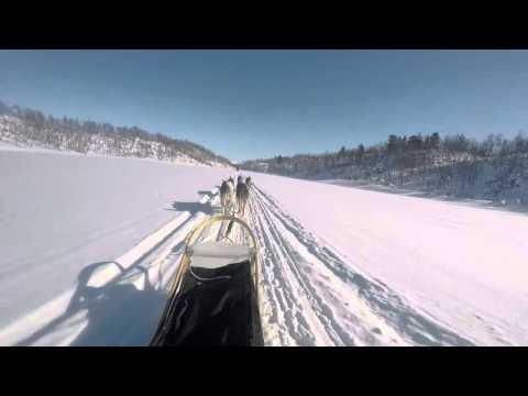 Winter 2015 in Lapland - Hetta Huskies - GoPro