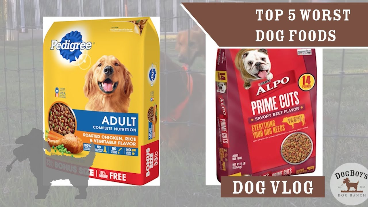 The 5 Worst Dog Foods Food