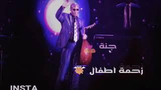 الأستاذ محمد الامين حلم الاماسي