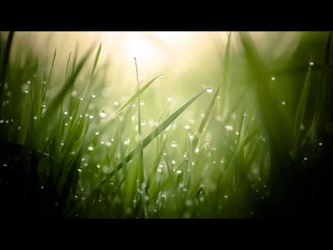 Morning Dew (Chillout mix)