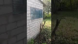 Шпитьки Участок со старым домом свой спуск к пруду