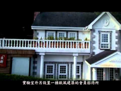 film corporate mandarin