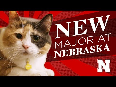New Major at Nebraska