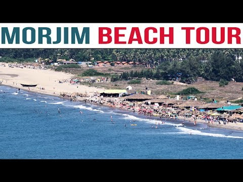 Morjim Beach Goa Tour Plan | Little Russia Tour Package