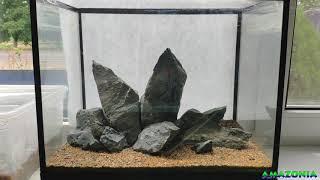 Трава из Китая в аквариуме: перезагрузка