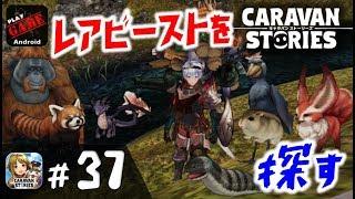 #37【キャラスト】1時間限定のレアビーストを探す旅に出る‼!MMORPGキャラバンストーリーズ - CARAVAN STORIES -