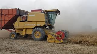 Wheat Harvesting in pakistan Newholand 8080