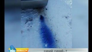 Народный корреспондент: синие выхлопные газы