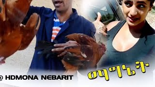 HDMONA -  ማግነት ብ ኣማን ናሕሽ (ወዲ ናሕሽ) Magnet by Aman Nahsh - New Eritrean Comedy 2017
