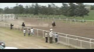 carreras de caballos Matamoros