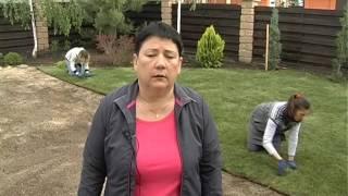 Укладка рулонного газона - сделай сам(, 2016-06-07T16:48:15.000Z)