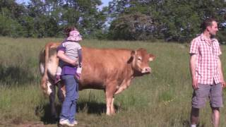 FARMER ACADEMY : SAISON 2 : L'équipe Aveyronnaise