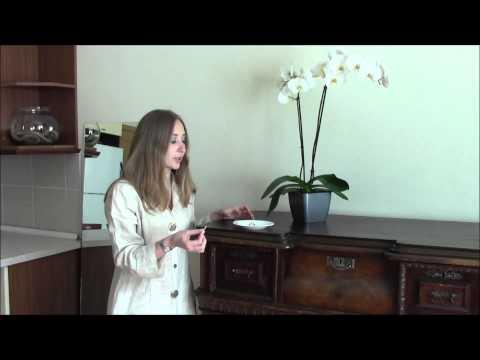 Oriental rugs: Buying guide