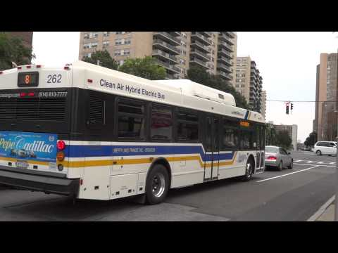 Bee Line 60 Bus Schedule Time