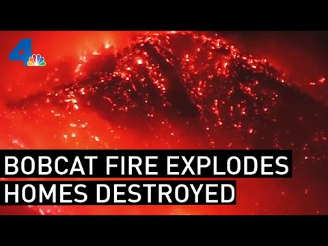 Bobcat Fire Explodes, Becomes One of Largest in LA County History | NBCLA