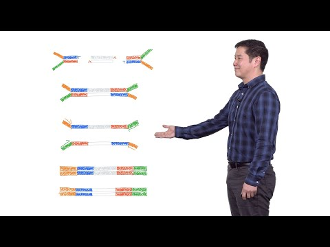 Next Generation Sequencing 2: Illumina NGS Sample Preparation - Eric Chow (UCSF)
