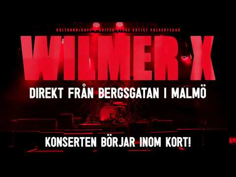 Wilmer X -