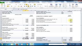 Financial Statement : Balance Sheet in Microsoft Excel : Excel Tips and Tricks