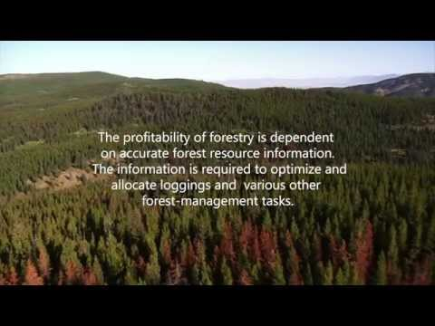 Precision Forestry