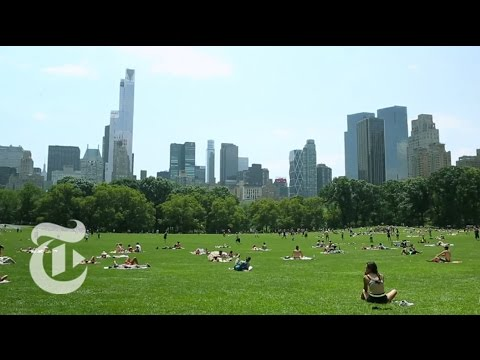 36 Hours in Central Park, New York | The New York Times